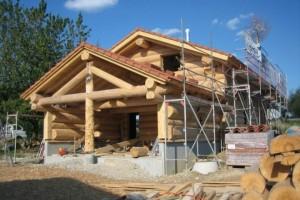 Выбор подходящего материала для строительства загородного дома