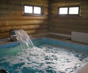 Баня своими руками с бассейном