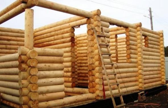 Из какого материала строить баню